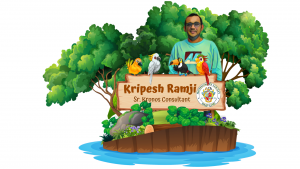 Kripesh the traveller